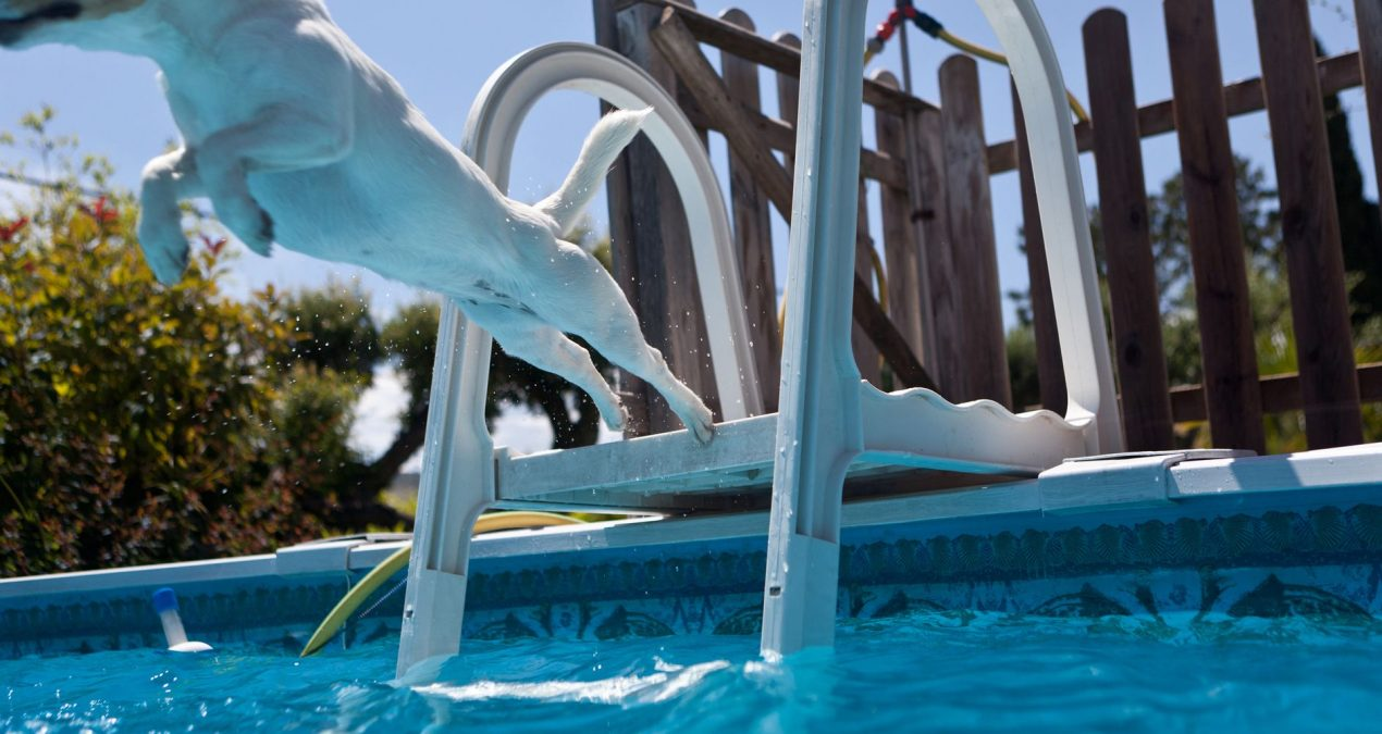 Find Out The Method To Begin Swimming Pool Service Provider